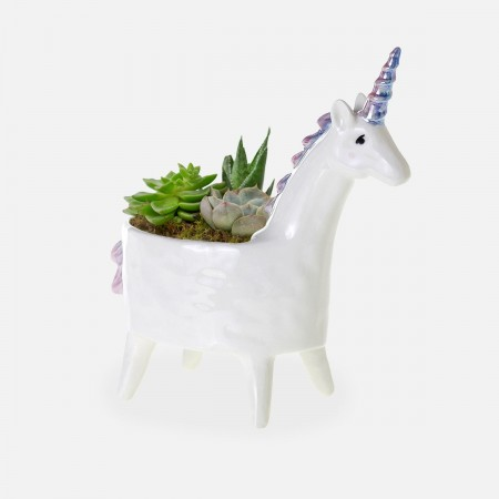 Unicorn Succulent Planter