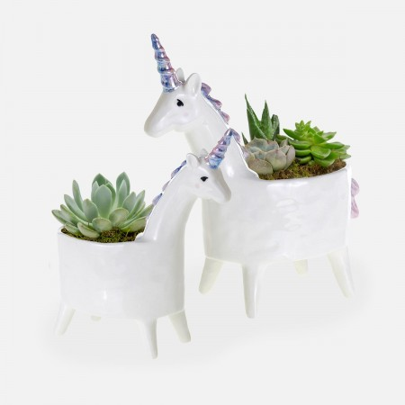 Unicorn Succulent Planter Set