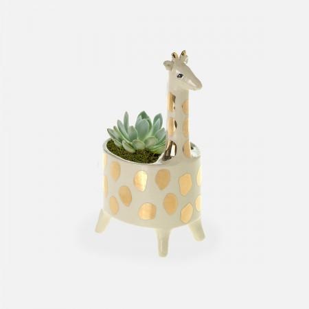 Baby Giraffe Succulent Planter