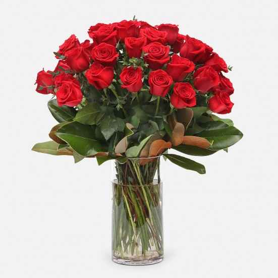 4-Dozen Elegant Roses Especially for Him