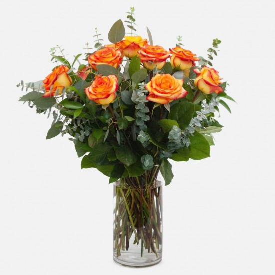 1-Dozen Bicolor Roses Flower Delivery New Jersey