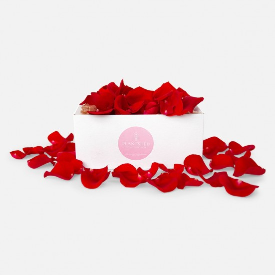 Red Rose Petals Box Love & Romance