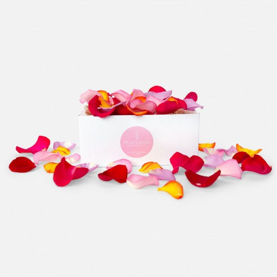 Mulitcolor Rose Petals Box Love & Romance