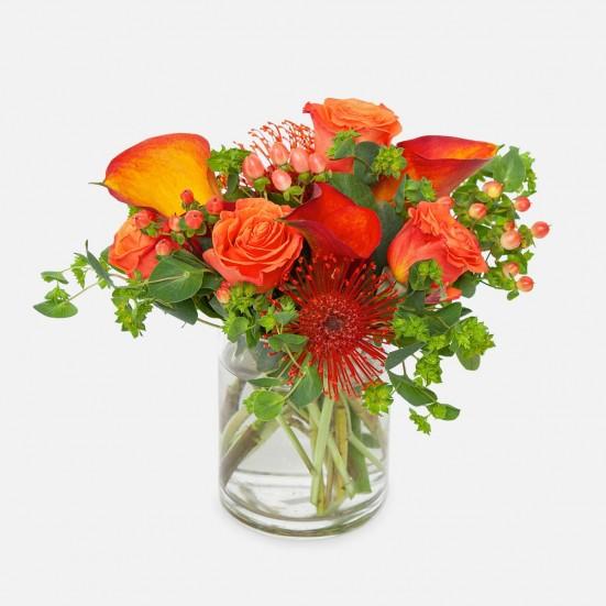 Orange Blaze Flowers