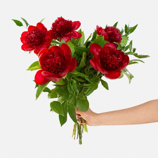 Red Peony Bouquet Just Because