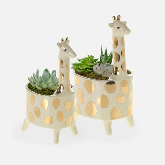 Giraffe Succulent Planter Set Birthday