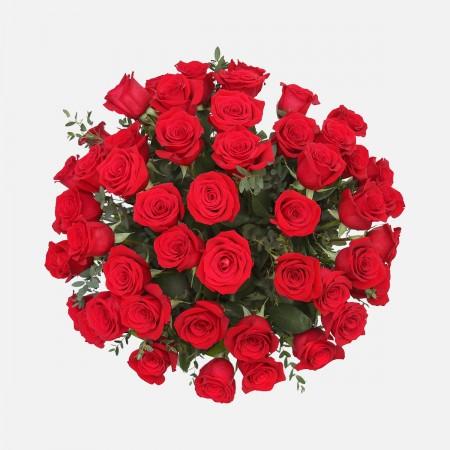 4-Dozen Elegant Roses