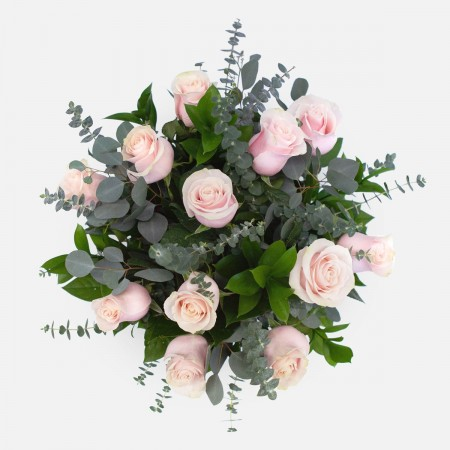 1-Dozen Soft Pink Roses