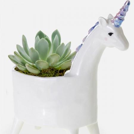 Baby Unicorn Succulent Planter