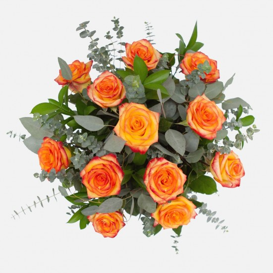 1-Dozen Bicolor Roses Flower Delivery in New Jersey