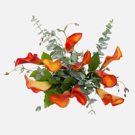 Mango Calla Lily Bouquet Flowers