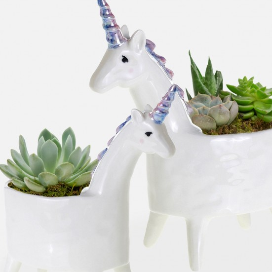 Unicorn Succulent Planter Set Get Well