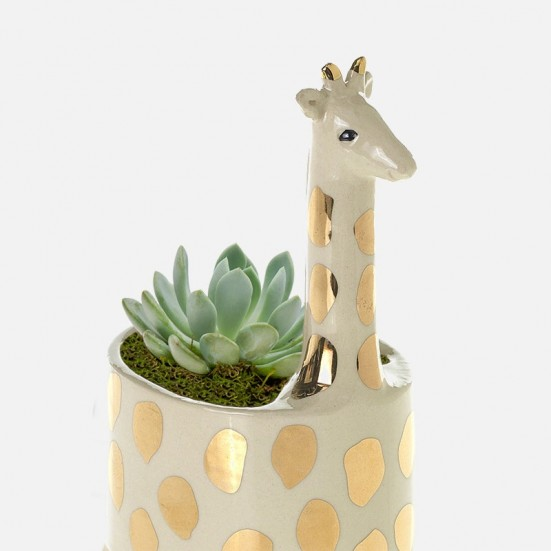 Baby Giraffe Succulent Planter Business Gifting