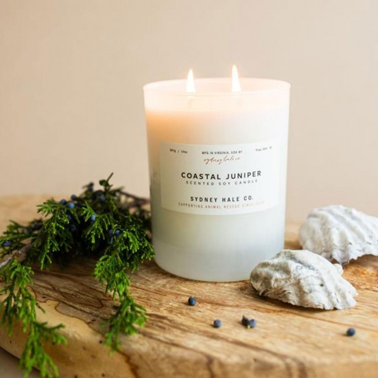 Coastal Juniper Scented Soy Candle Admin's Week